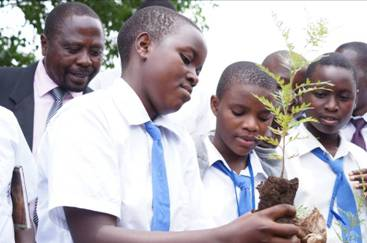 Students participating in the 'One Million Tree Campaign